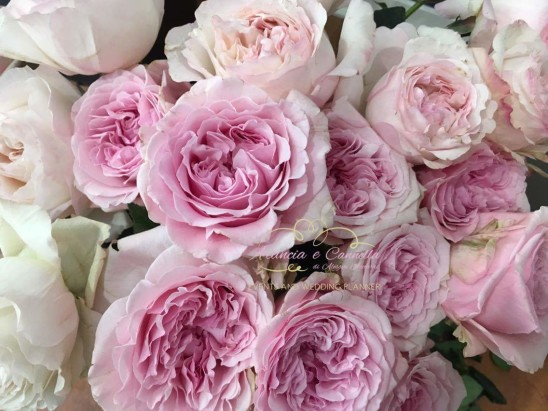 Parliamo dei fiori…